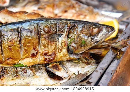Grilled Fish With Vegetables And Lemon For Summer Barbecue