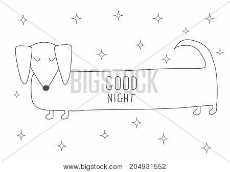 Cute sleeping Dachshund.  Antistress coloring book. Hand drawn elements for your designs dress, poster, card, t-shirt.