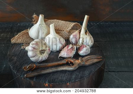 Fresh harvest garlic on a wooden stand in a rustic style. Art. Copy the place. The vertical frame.