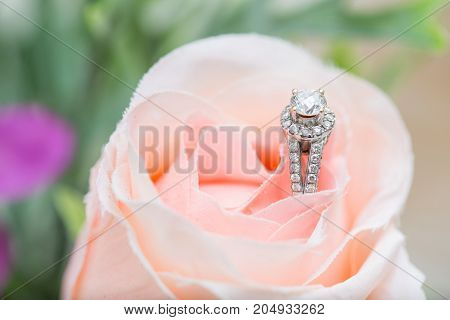 Closeup of wedding ring - stock image