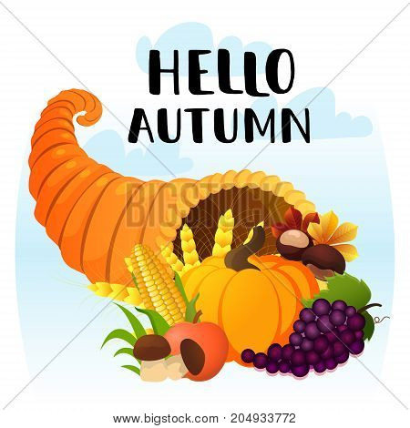 Hello Autumn greeting card. Vector illustration of a cozy scene with cornucopia with cartoon pumpkin golden wheat chestnut grape autumn leaves and other elements of Thanksgiving Day.