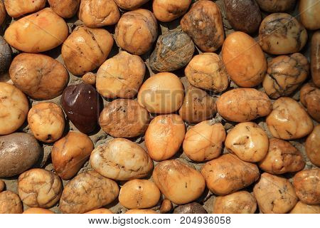 Texture of gravel pattern on wall for use as background.