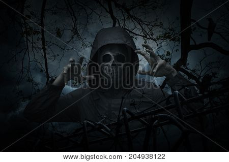 Human skull in jacket with old fence over dead tree crow moon and spooky cloudy sky Halloween concept