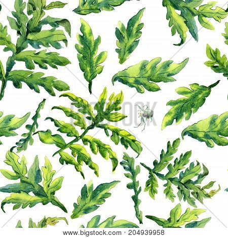 Pattern hand drawing watercolor Forest fern leaves ornament