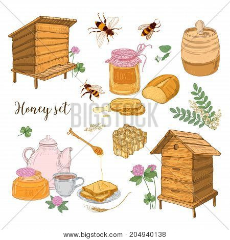 Honey production, beekeeping or apiculture set - honeycomb, man-made beehives, wooden dipper, bees, teapot hand drawn in retro style on white background. Colored vector illustration