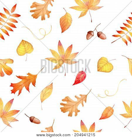 Watercolor seamless hand drawn pattern with autumnal colorful leaves