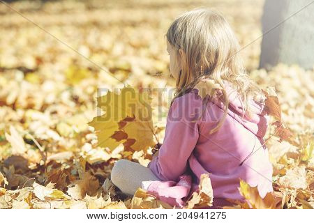 happy little girl laughing and playing with leaves in the autumn on the nature walk outdoors