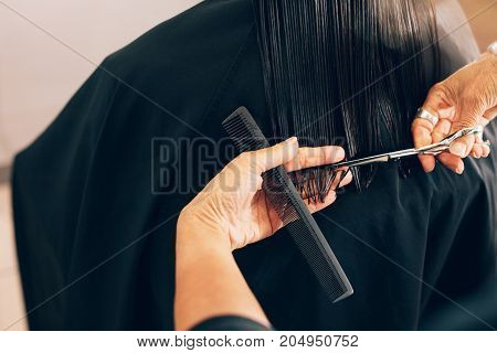 Close up of hair stylist cutting the hair to a straight level. Hairdresser using comb and scissors for a hair cut.