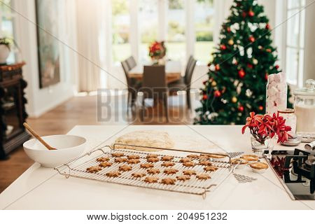 Tray of baked star cookies and dough placed on kitchen table. Decorated Christmas tree in the background.