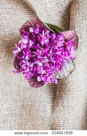 A small bunch of beautiful spring violet flowers put in water in transparent glass bowl vase with woven texture background