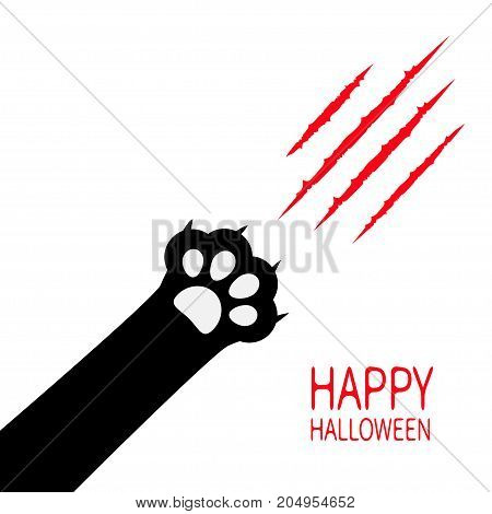 Happy Halloween. Bloody claws animal scratch scrape track. Black cat scratching paw print leg foot corner. Cute cartoon character silhouette. Baby pet collection. Flat design. White background Vector