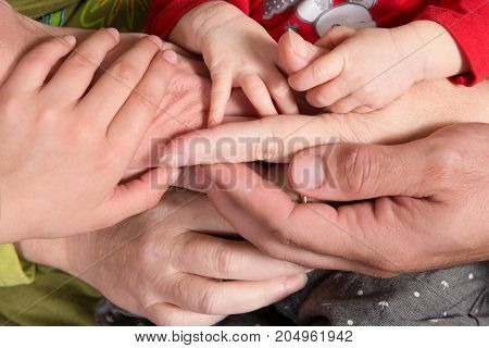 Family Baby Hands. Father And Mother Holding Newborn Kid And Sister. Child Hand Closeup Into Parents