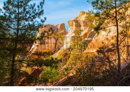 Red loamy wall of Providence Canyon with trees in sunny day USA