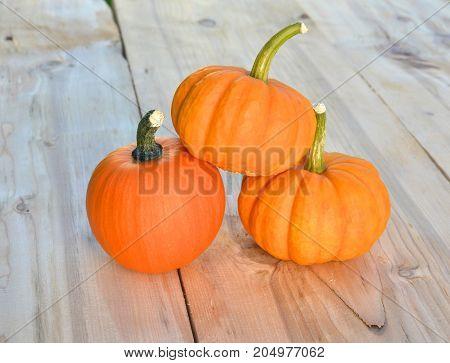 Three little orange pumpkins on wooden background
