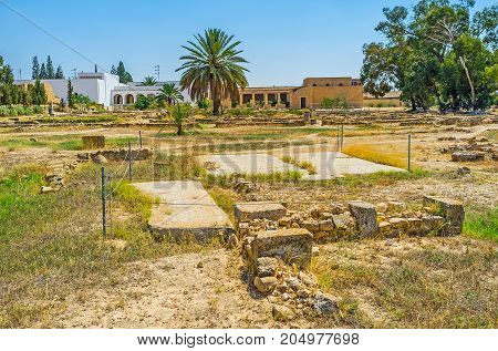 Visit El Djem Archaeological Museum