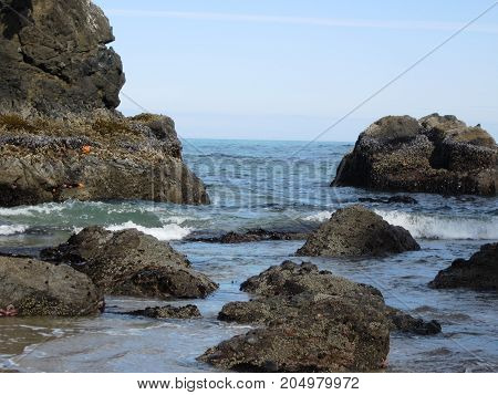 Coastal rock formations on Central Oregon Coast