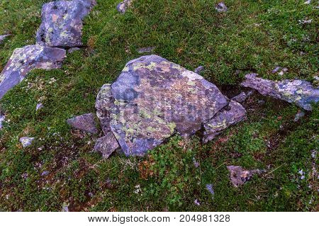Multicolored stones and moss in mountains of Western Norway