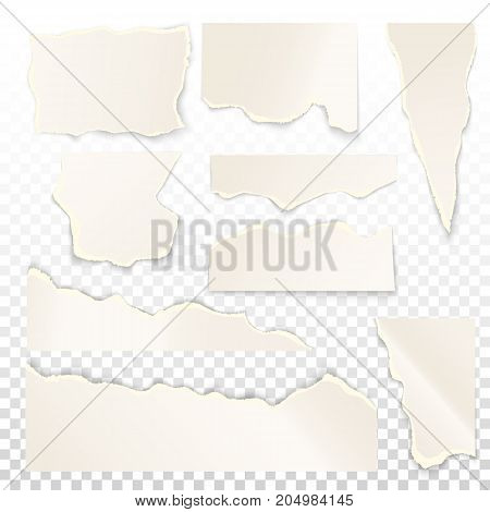 Blank or empty scrap paper. Set of isolated white ripped or ragged, shred fragment of cardboard. Square and oblong, rectangular notepaper. Message and memo, document theme