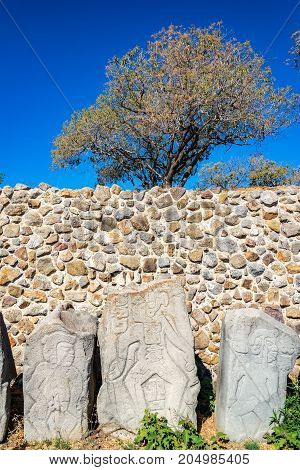 Stelae known as the danzantes in Monte Alban in Oaxaca Mexico