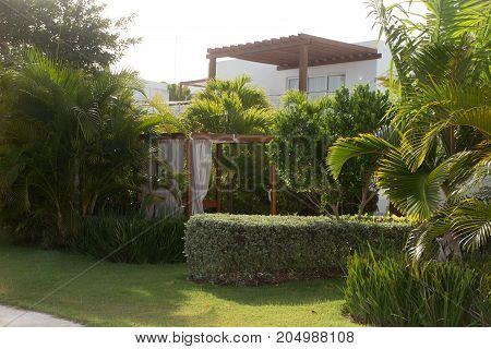 Delicious Garden In Summer Vacation In Pacific Island