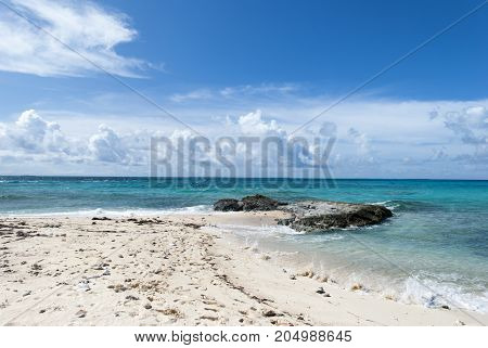 The beach full of large shells on Grand Turk island beach (Turks and Caicos Islands).