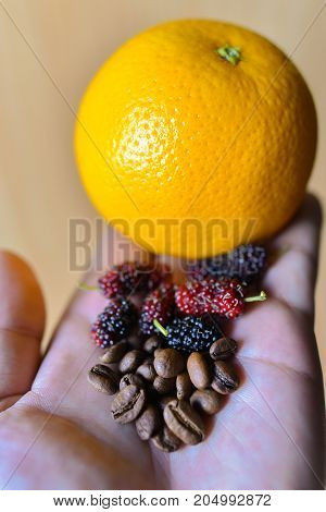 coffee bean and berry orange lemon concept you can create coffee flavor aroma and tase of fruity juicy with your hand