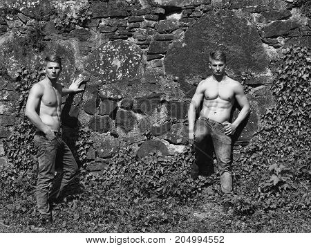 Muscular Twins On Stony Wall Backdrop