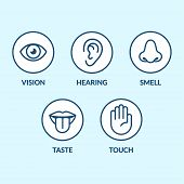 Icon set of the five human senses: vision (eye) smell (nose) hearing (ear) touch (hand) taste (mouth with tongue). Simple minimal line icons vector illustration. poster