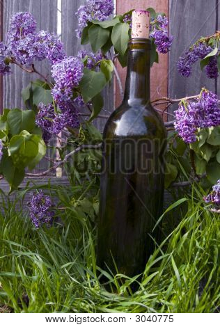 Lilacs And Wine Bottle
