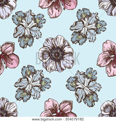 Seamless Pattern With Hand Drawn Colored Anemone, Iris Japonica, Sakura