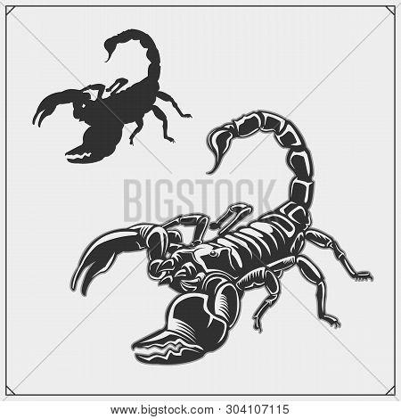 Scorpion1.eps