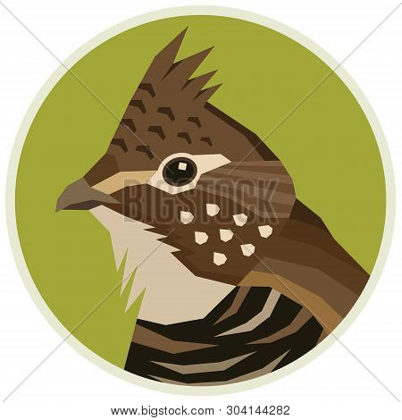 Ruffed Grouse Birds Collection Vector Illustration Round Frame Set