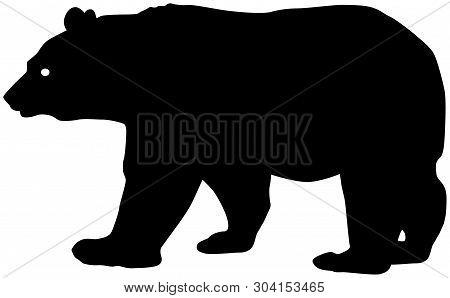 Mama / Papa / Baby Bear Walking Vector Silhouette.