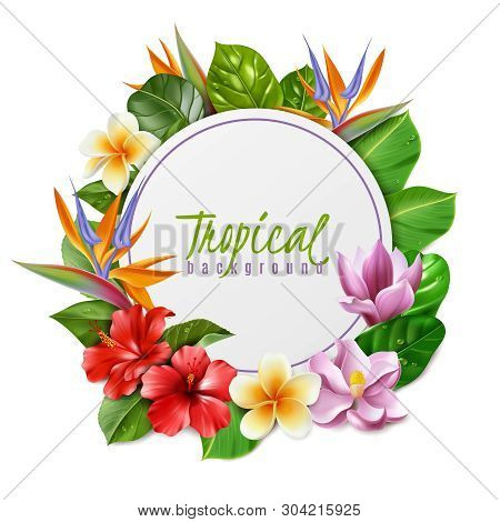 Raelistic Exotic Flowers Frame Illustration. Frame Illustration Composed Of Isolated Tropical Flower