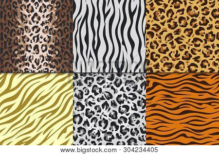 Seamless Animal Prints. Leopard Tiger Zebra Skin Patterns, Texture Stripes Backgrounds. Vector Afric