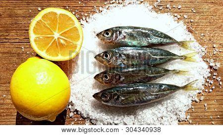 Fresh Mackerel Fish Background Display Market. Sea Little Fish Mackerel Saurels Or Sardine Trachurus