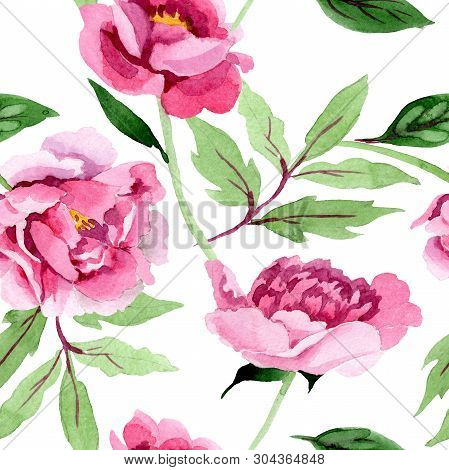 Pink Peony Floral Botanical Flowers. Watercolor Background Illustration Set. Seamless Background Pat