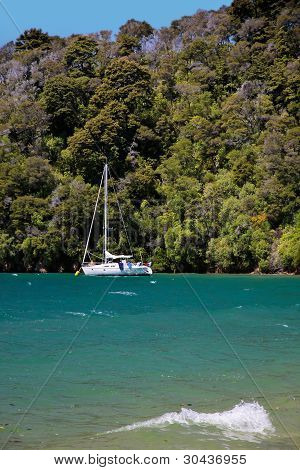 Sailboat And Beach In The Marlborough Sounds