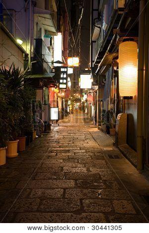 Night alley.Osaka.Japan.Area Dotonbori.2008 year