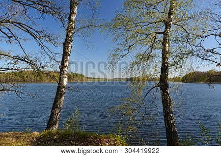 Ponds In The Countryside, Kaclezsky Pond Of South Bohemia, Czech Republic