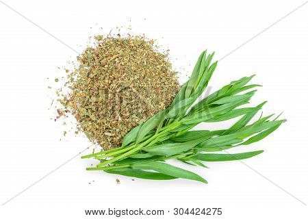 Tarragon Or Estragon Fresh And Dried Isolated On A White Background. Artemisia Dracunculus. Top View