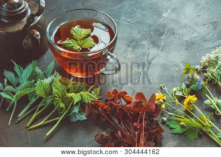 Several Medicinal Plants And Herbs, Healthy Herbal Tea Cup And Vintage Copper Tea Kettle. Herbal Med
