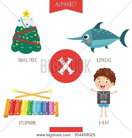 Vector Illustration Of Alphabet Letter X And Pictures