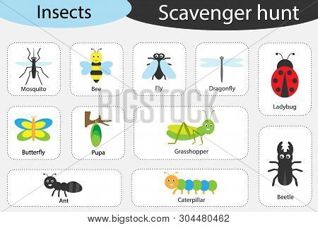 Scavenger Hunt, Insects Theme, Different Colorful Pictures For Children, Fun Education Search Game F