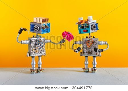 Dates Robots. Romantic Robot Man Gives A Bouquet Of Pink Roses Flowers To A Female Robot. Dating Age