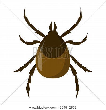 Mite Insect. Encephalitis Parasite, Brown Bug. Dangerous For Human Creature.