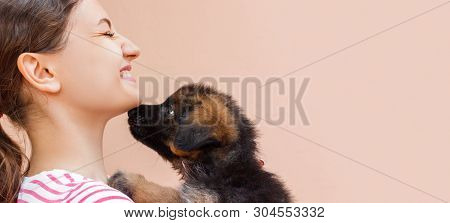 Puppy Is Giving A Kiss To Its Girl Owner