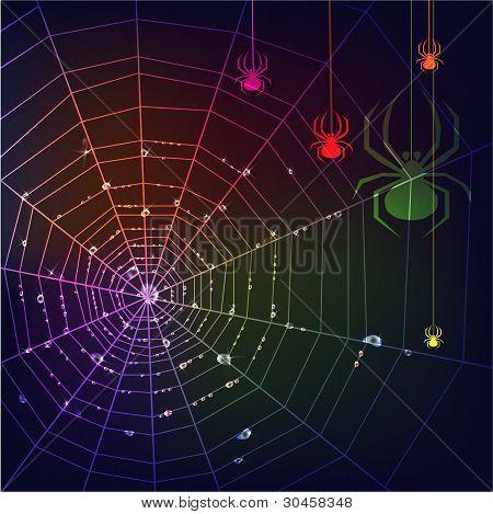 Dark Spider Web Background