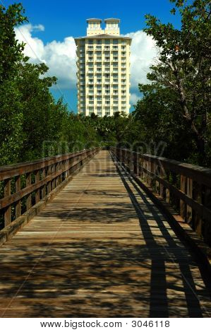Hotel In The Mangrove Jungle, Bonita Springs, Florida, Usa