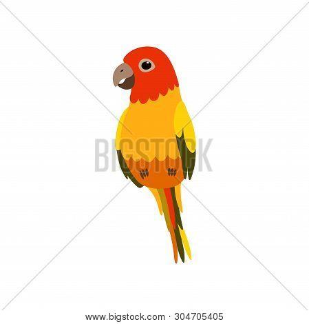 Little Finch Bird, Cute Birdie Home Pet Vector Illustration